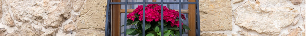 4 Important Ways to Upkeep Your Home to Prepare for Spring